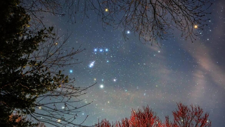 Observation des étoiles avec Orion |  Les jardins de Laurent du vieux fermier