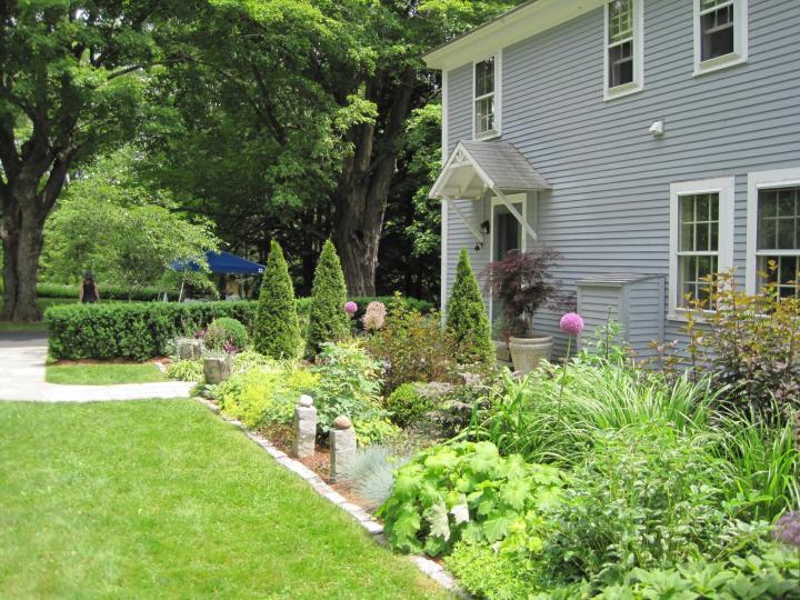 Comment démarrer un jardin de fleurs: conseils et idées de conception