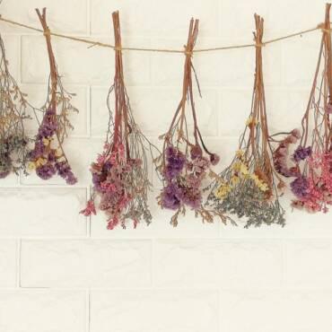1623294162_dried-flowers-gettyimages-1146588029.jpg