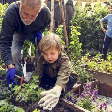 1623467080_garden-kids-shutterstock_604273937.jpg
