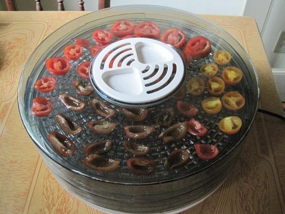 Sécher les fruits et légumes avec un déshydrateur alimentaire