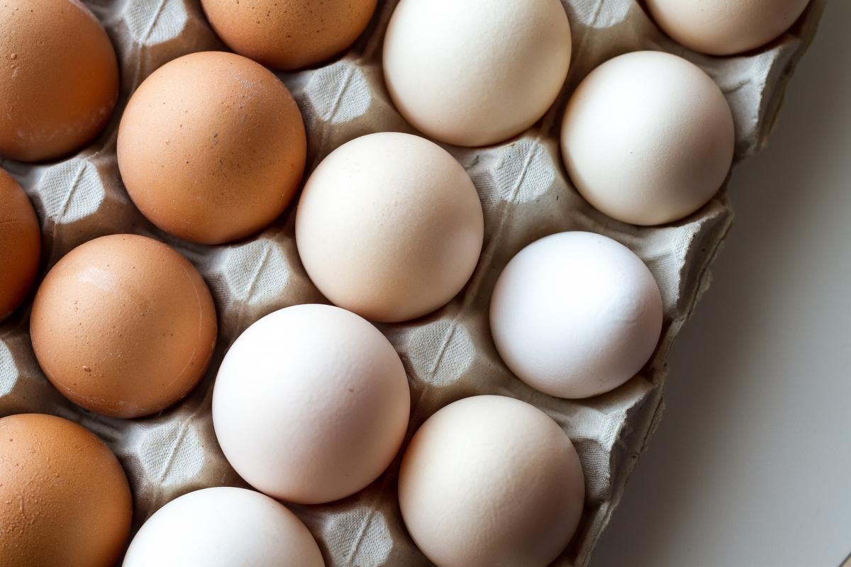 Tout sur les œufs: faits intrigants sur les œufs et folklore