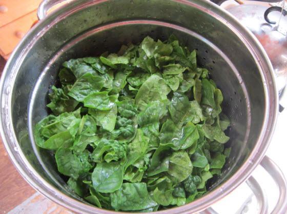 Comment congeler les épinards, la bette à carde, les feuilles de betterave |  Congeler des légumes