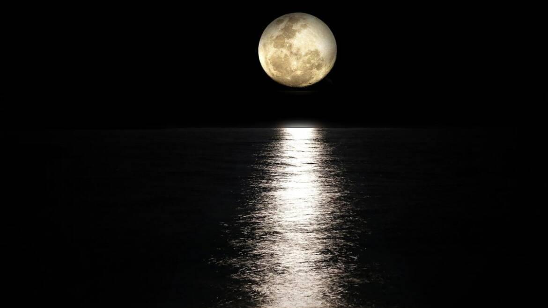 La pleine lune d'août semble briller tout le week-end |  Les jardins de Laurent du vieux fermier