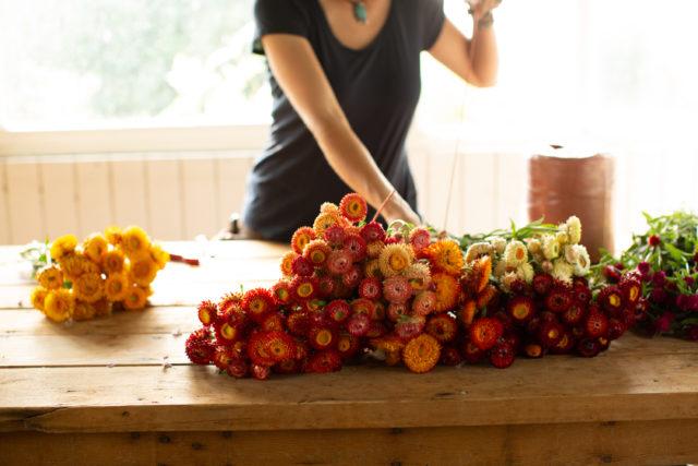 attacher des bouquets de fleurs de paille séchées