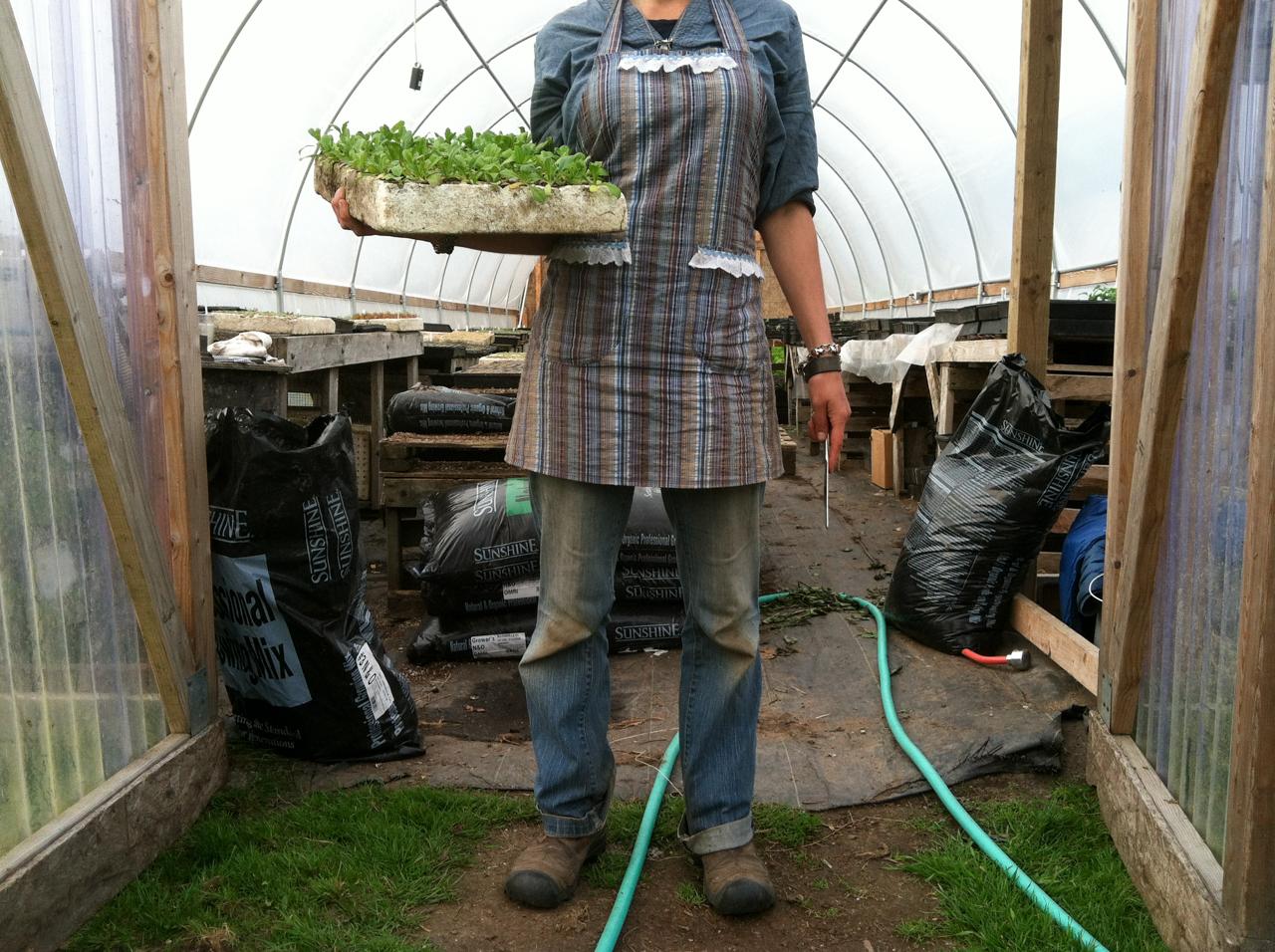 Erin Benzakein tenant un plateau de semis à l'extérieur de la serre