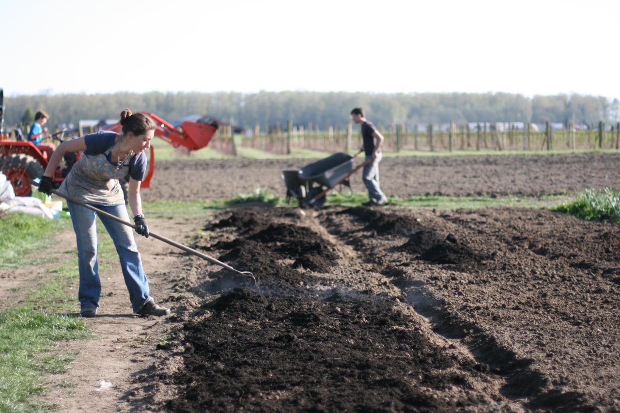 Erin Benzakein ratisse le compost à la ferme