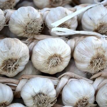 garlic-1400584_1920.jpg