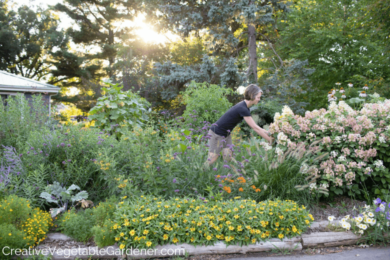 Jardinier de légumes créatif: deux façons rapides et sans creuser de faire un parterre de fleurs