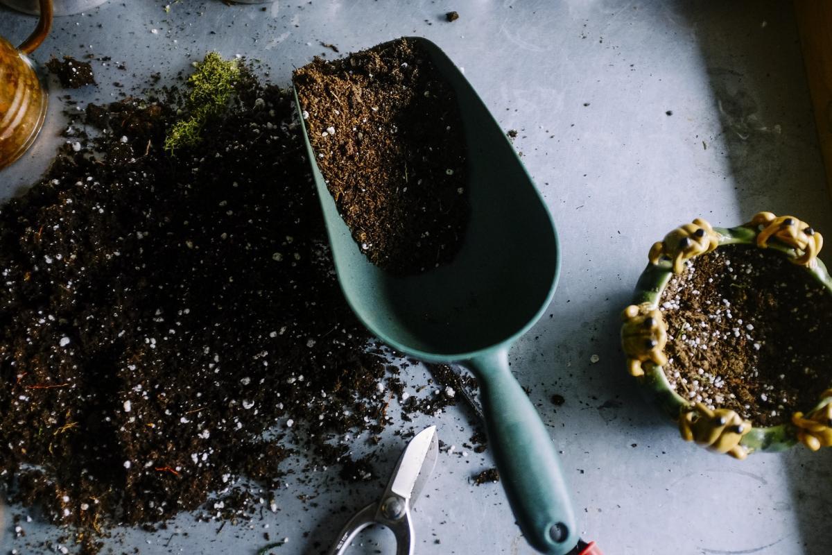 Utiliser des amendements organiques de sol dans votre jardin